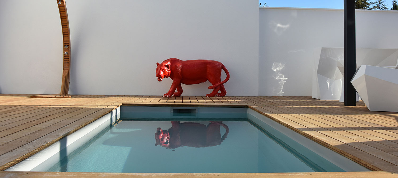 petite piscine rectangulaire
