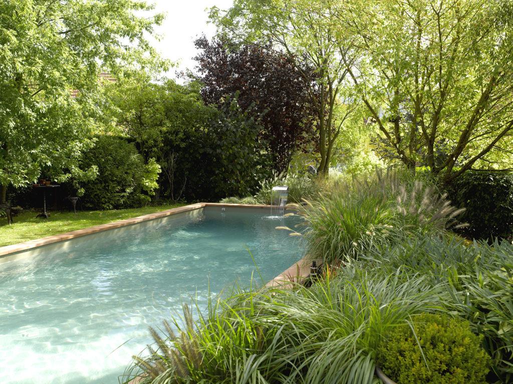 piscine nature végétation